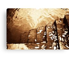 Down to the River Canvas Print