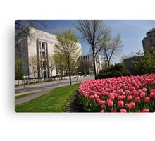 Spring Time in Ottawa Canvas Print