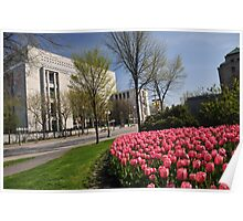 Spring Time in Ottawa Poster