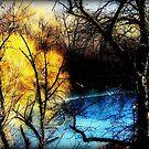 Winter Chill © by Dawn M. Becker