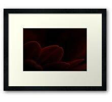 Red Gerbera (Macro) Framed Print