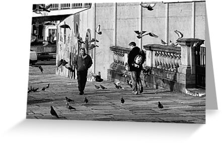 Free as a Bird by Chris Cardwell