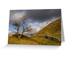 Lone tree in the English Lake District Greeting Card