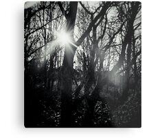 Out of the Dark Metal Print