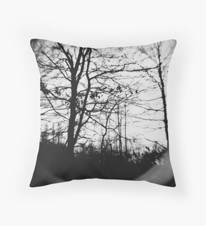 Assimilate Throw Pillow