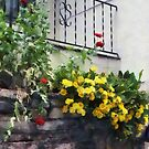 Planter With Yellow Flowering Cactus by Susan Savad