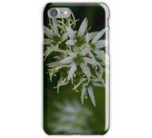 Wild Garlic Flower I Phone Case.  iPhone Case/Skin