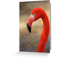 Flamingo Profile Greeting Card