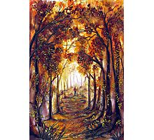 Autumn Memories Photographic Print