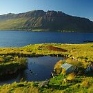 Indian Summer, East Fjords by lukasdf