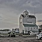 Theodore, Saskatchewan Grain Elevator by Vickie Emms
