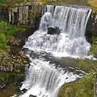 Ebor Falls by Penny Smith