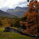 Autumn in Great Langdale by mikebov