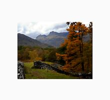 Autumn in Great Langdale Unisex T-Shirt