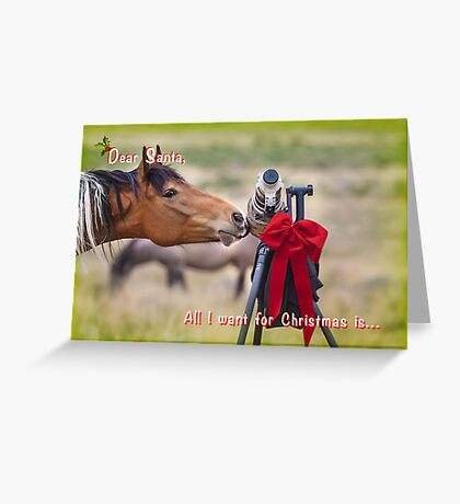 List for Santa Greeting Card