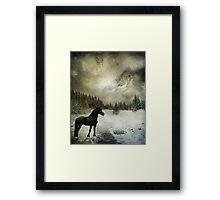 Sentry Framed Print