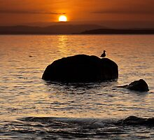Dixons Beach Sunrise #10 by Chris Cobern