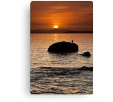 Dixons Beach Sunrise #10 Canvas Print