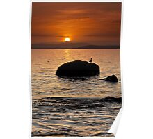 Dixons Beach Sunrise #10 Poster