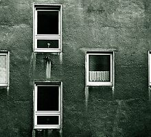 Windows of Decay by Tony Buchwald