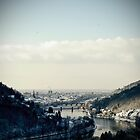 Heidelberg by Tony Buchwald