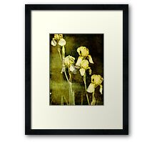Spring is not far behind Framed Print