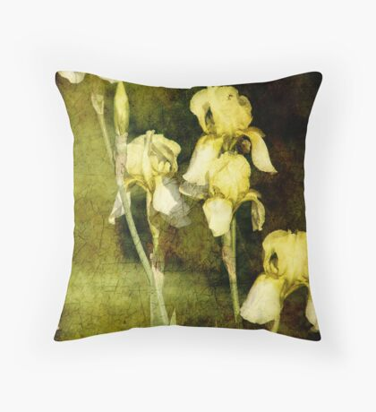 Spring is not far behind Throw Pillow