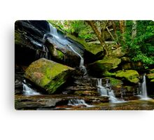 Afternoon Delight. Canvas Print