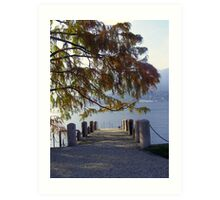 Private Pier on the Lake Art Print