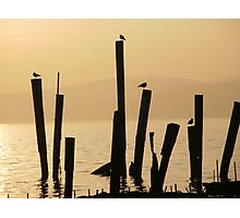 Hudson River in January Photographic Print