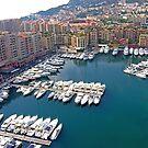 Monaco Marina by Tom Gomez