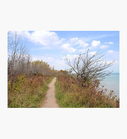 Path Above the Lake Photographic Print