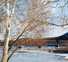 Railroad Bridge 1 by Lynn McCann