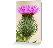 """Prickly Beauty"" Greeting Card"