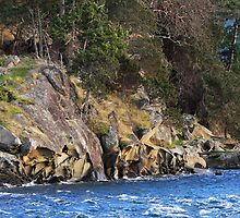 Sandstone Point on Georgeson Island  by TerrillWelch