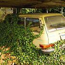 Honey, Where'd You Park The Car? by WildestArt