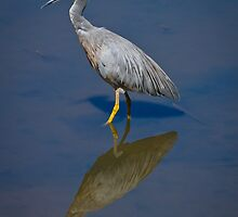 Me and My Reflection by Barb Leopold