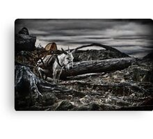 The Desolate One* Canvas Print