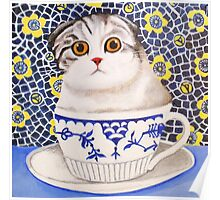 Kitten in Cup - Scottish Fold Poster