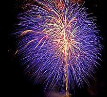 Purple Fireworks, Busselton 2012 by Julia Harwood