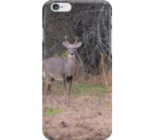 Buck Photograph iPhone Case/Skin