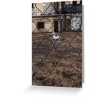 The Silver Hobby Horse - 5 Greeting Card