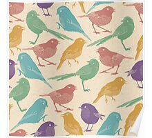 Cute Colorful Birds Poster