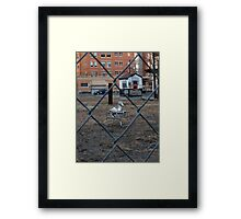 The Silver Hobby Horse - 2 Framed Print