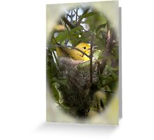 Yellow Warbler in Nest Greeting Card