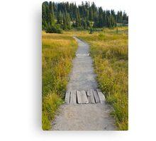 Path Along Mount Rainier Canvas Print