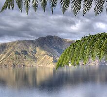 View from Maud Island by nzpixconz