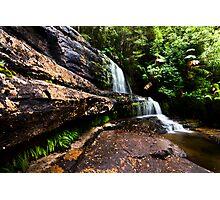 Lady Barron Falls Photographic Print