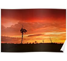 Afternoon Sunset Poster