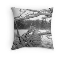 Snowbound Pond Throw Pillow